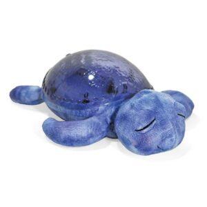 tranquil-turtle-cloudb